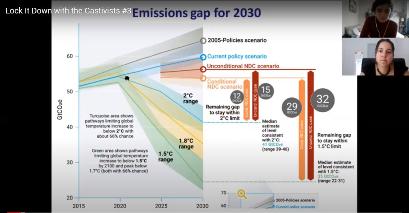 Webinar: A luta contra o gás fóssil em Moçambique e em Portugal